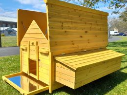 Chicken House Nelly Air Design