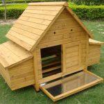Chicken House holds 6-8 Birds