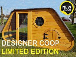 Noah's Ark Chicken Coop product